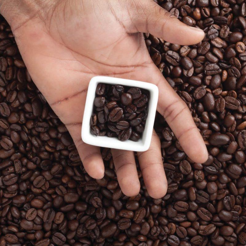 coffee-knowledge-training