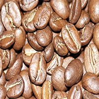 Roasted Aureo Coffee Beans
