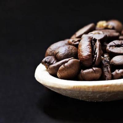 Coffee knowledge training